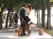 "Free Sneak Preview Movie: ""Dog Days"" 