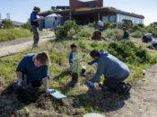EcoCenter Playday: Volunteer Work Party & Free Rock Wall Climbing | SF